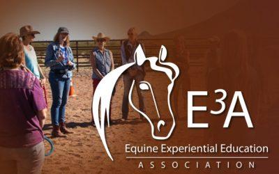 E3A 2021 International Conference