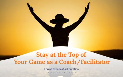 How to Stay at the Top of Your Game as a Coach and Facilitator